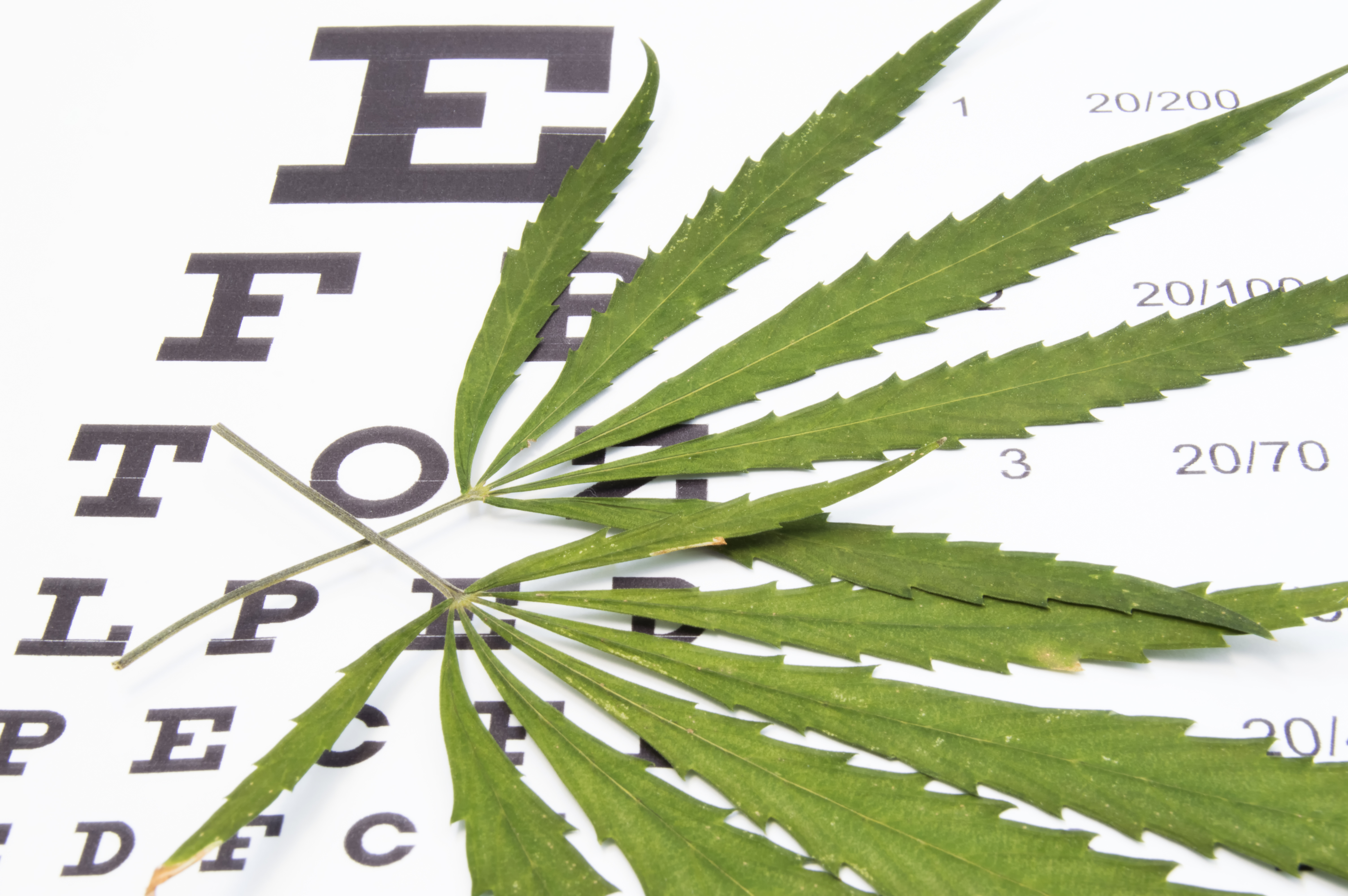 PODCAST: Marijuana—Good, Bad or Ugly for Patients with Atrial Fibrillation?